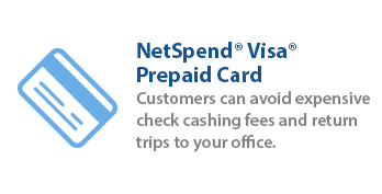 Net Spend Pre-pain Visa